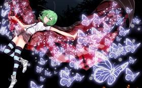 Картинка девушка, бабочки, ночь, крылья, месяц, арт, touhou
