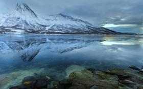 Обои зима, вода, снег, озеро, отражение, камни, дно