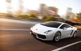 Картинка авто, скорость, Lamborghini, шоссе, суперкар, Gallardo, LP560