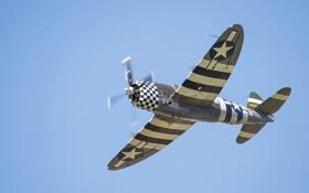 Обои P-47G Thunderbolt, самолёт, авиация