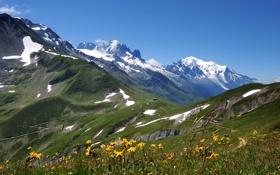 Картинка весна, склоны, люди, альпы, горы, цветы