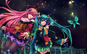 Картинка бабочки, цветы, ночь, девушки, забор, vocaloid, hatsune miku