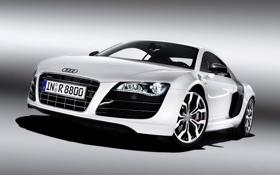 Обои белый, Audi, Авто, Решетка, Фары, Номер, V10