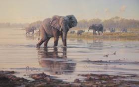 Картинка животные, деревья, пейзаж, птицы, река, картина, арт