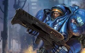 Обои оружие, броня, десант, Starcraft, Tuchys Findlay
