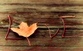 Обои макро, лист, слово