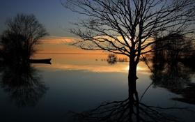 Картинка небо, облака, закат, озеро, дерево, лодка, вечер