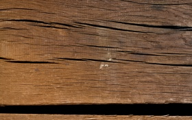 Обои wood, pattern, black lines, white spot