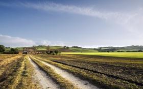 Картинка дорога, поле, пейзаж, дом
