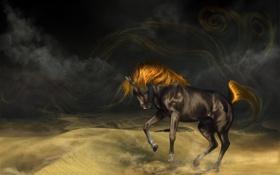 Обои лошадь, песок, masterBo, вороной, буря, арт, конь