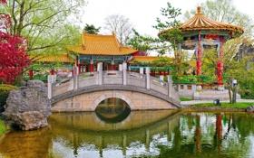 Обои пруд, беседка, Chinese Garden, Цюрих, Zürich, Switzerland, мост