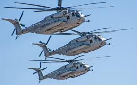 Обои полёт, вертолёт, военный, Sikorsky, транспортный, тяжёлый, Sea Stallion