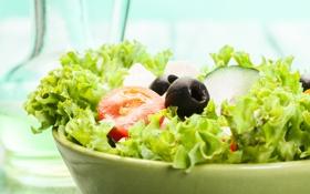 Обои зелень, миска, овощи, оливки, vegetables, greens, lettuce