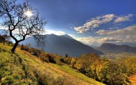 Картинка лес, небо, солнце, облака, свет, пейзаж, горы