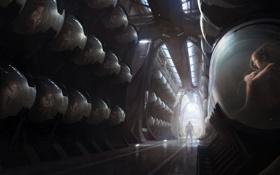 Картинка люди, человек, капсулы, хранилище, concept art, oblivion, коридоры