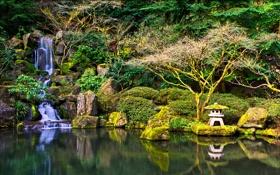 Картинка зелень, пруд, парк, камни, водопад, мох, США