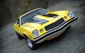 Обои желтый, шевроле, мускул кар, классика, camaro, chevrolet, muscle car