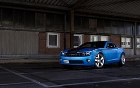 Обои car, синий, Chevrolet, Camaro, автомобиль, blue