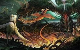 Обои сказка, феникс, дракон, единорог, мифы, легенда
