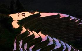 Обои холмы, поля, вечер, Китай