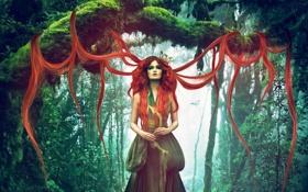 Картинка лес, взгляд, деревья, природа, лицо, фантастика, волосы