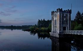Обои лес, небо, облака, деревья, отражение, вечер, Ирландия