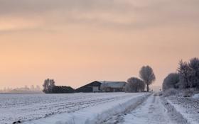 Обои зима, поле, дом