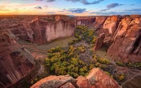 Обои деревья, скалы, каньон, ущелье, США, вид сверху, Canyon de Chelly