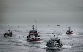 Обои море, гроза, волны, чайки, лодки, горизонт, флот