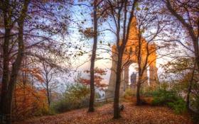 Картинка осень, небо, листья, облака, деревья, ветки, город