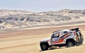 Обои белый, Песок, Авто, Машина, Скорость, Land Rover, Rally