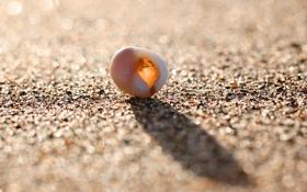 Обои песок, пляж, лето, солнце, свет, радость, блики