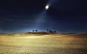 Картинка поле, пейзаж, ночь