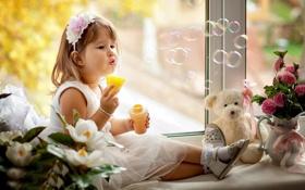 Картинка девушка, цветы, лицо, ребенок