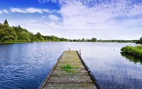 Картинка трава, вода, деревья, мост, природа, озеро, река