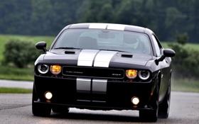 Картинка Dodge, SRT8, Challenger, black, 392, Edition, Inaugural