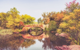 Картинка осень, листья, деревья, озеро, отражение, люди, Нью-Йорк