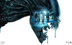 Обои монстр, зубы, Чужой, солдаты, Alien, слизь, икла