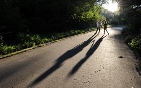 Картинка дорога, тени, свидание