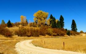 Картинка дорога, осень, небо, деревья, холм