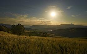 Картинка закат, деревья, солнце, холмы, Италия, поля
