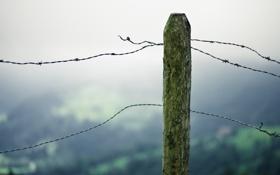 Обои макро, забор, мох, столб, проволка