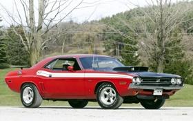 Обои тюнинг, 1971, Dodge, Challenger, мускул кар, додж, классика