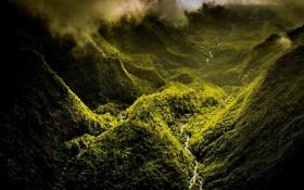 Картинка лес, горы, туман, река, фото