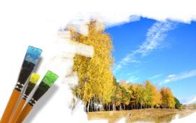 Обои лес, небо, деревья, рисунок, кисти, золотая осень
