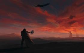 Картинка небо, птицы, фантастика, человек, арт, устройство, плащ