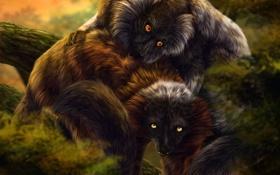 Картинка животные, дерево, листва, арт, пара, мех, лемуры