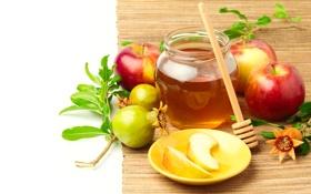 Обои мед, веточки, яблоки, гранат, листики