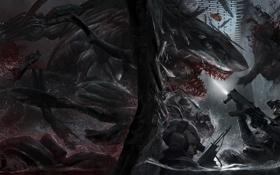Картинка атака, Shark, kill, LMS