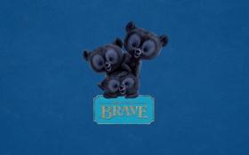 Картинка надпись, табличка, три, медвежата, трое, синий фон, Храбрая сердцем